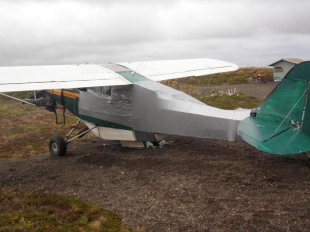 Bear Attacks Plane, Pilot Fixes Plane With Duct Tape, Pilot