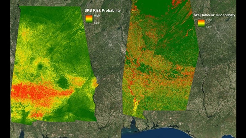 Images created by NASA with satellite data helped the U.S. Department of Agriculture analyze outbreak patterns for southern pine beetles in Alabama, in spring 2016. NASA