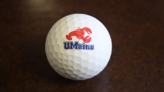 Illustration for article titled This Biodegradable Golf Ball Is Made From a Lobster
