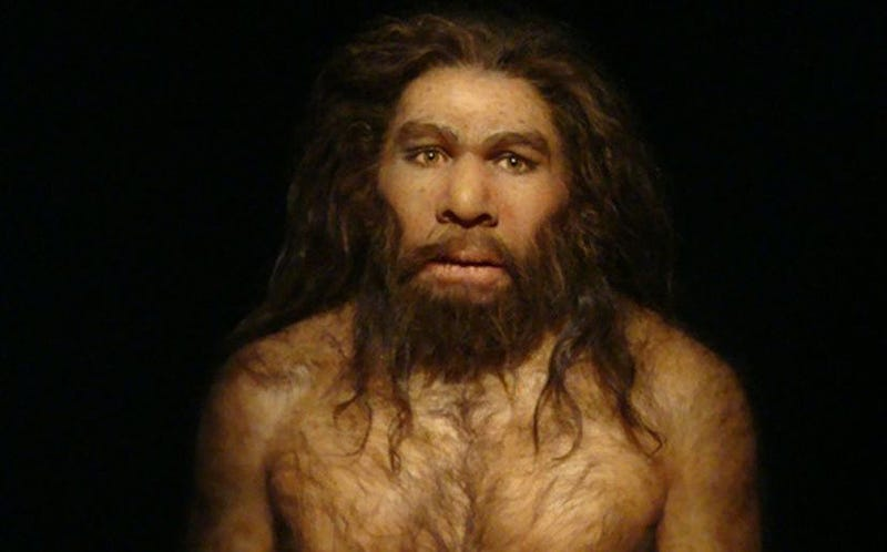 Reconstrucción del posible aspecto de un Neandertal.