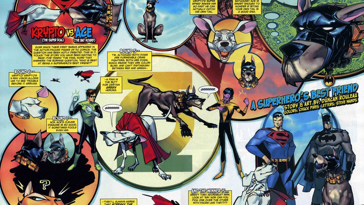 10 Greatest Superhero Dogs!