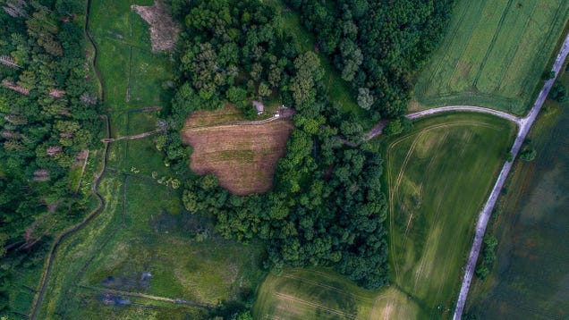 Evidence of Nazi Brutality Uncovered in Poland's 'Death Valley'