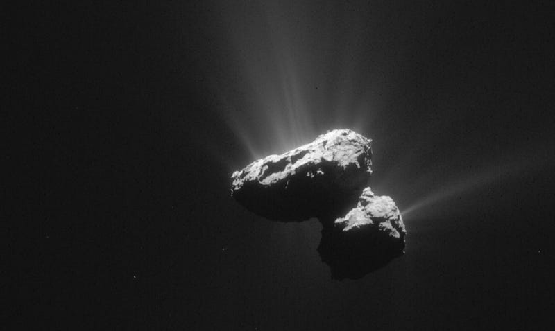 The famous Rosetta's comet, which contains simple organic moleucles that may represent life's precursors. (Image: ESA)