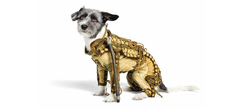 Illustration for article titled You Can Buy This Adorable, Original Soviet Spacesuit For Your Dog