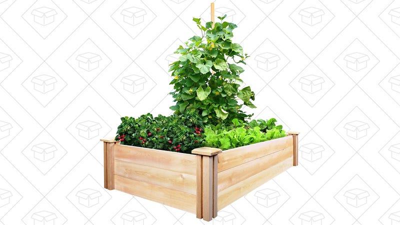Greenes Fence Cedar Raised Garden Kit, $27