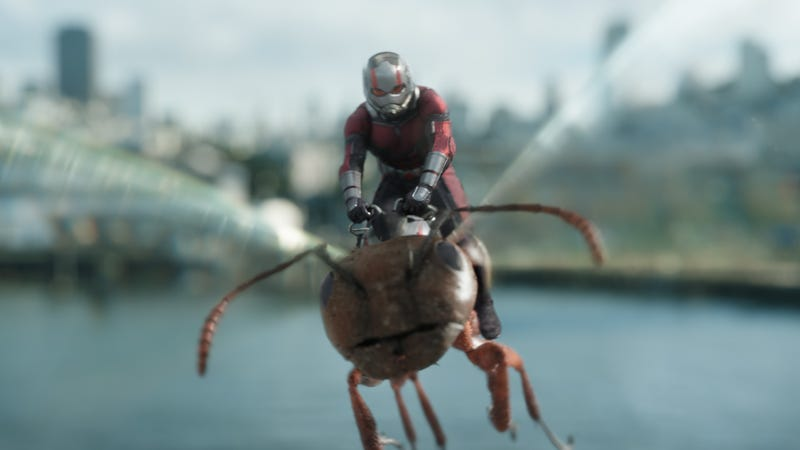 Illustration for article titled Ant-Man And The Wasp's mid-credits stinger is the best possible use of Marvel's long-running tactic