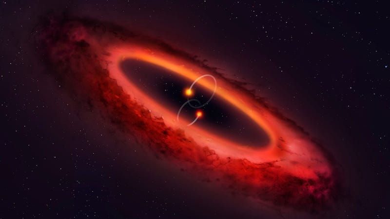 Artist's depiction of HD 98800, featuring the protoplanetary disk and inner binary pair. The outer binary pair is not shown.