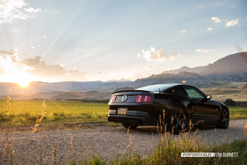 Illustration for article titled Yellowstone And Bluegrass: Mustang USA Part Twelve