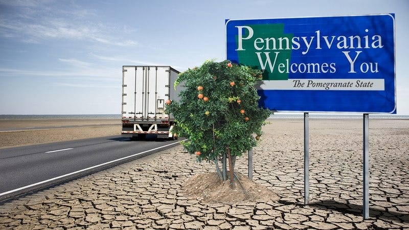 The Pennsylvania welcome sign with one pomegranate tree next to it.