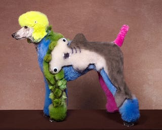 Illustration for article titled Dog grooming taken to new levels