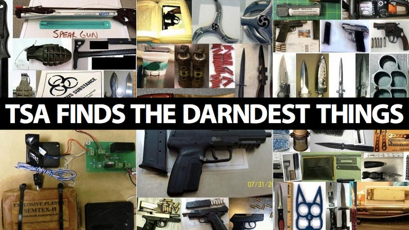 Illustration for article titled Here Are the Crazy Things the TSA Has Found in 2012: Gassed Up Chainsaws, Explosive Cannonballs, Bear Mace and More