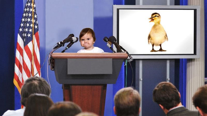 Prominent members of the toddler community demand a marked increase in duck visibility in parks and ponds.