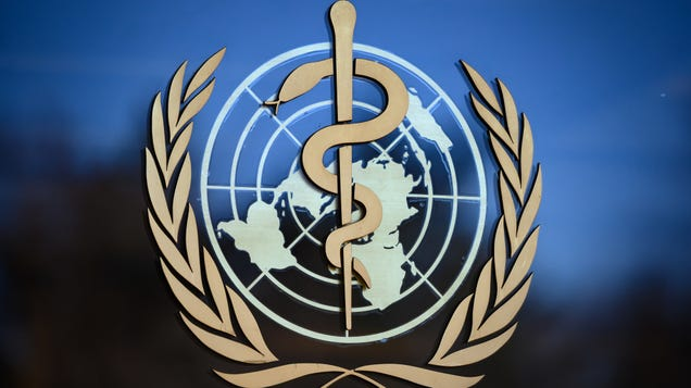 No, the World Health Organization Did Not  Backflip  on Lockdowns