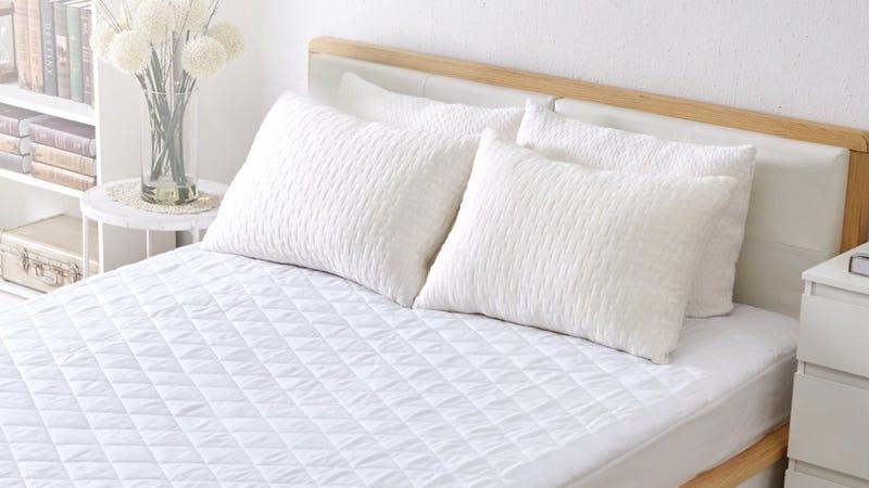 CertiPUR Shredded Memory Foam Pillow, $22