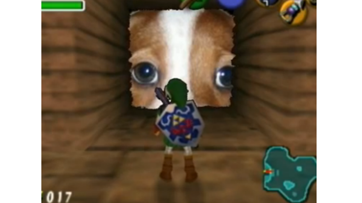 The Dog Behind One Of Twitch's Oldest Emotes Has Died