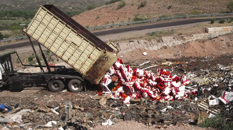 Illustration for article titled The Crazy, Broken Food Superhighway That Supplies America's Produce
