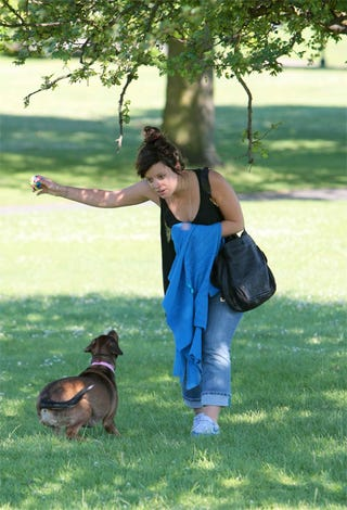 """Illustration for article titled Lily Allen To Dog: """"This Is Not A Toy"""""""