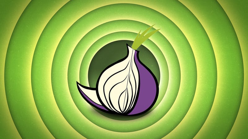 Illustration for article titled What Is Tor and Should I Use It?