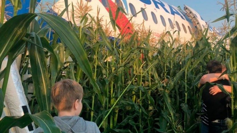 Illustration for article titled Un pasajero graba el milagroso aterrizaje de emergencia de un avión con 233 pasajeros en un campo de maíz en Rusia