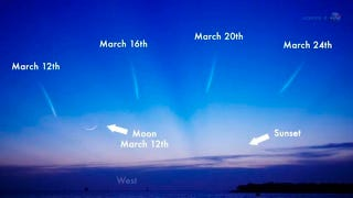 Illustration for article titled NASA's Guide to Viewing the Comet PANSTARRS this Month