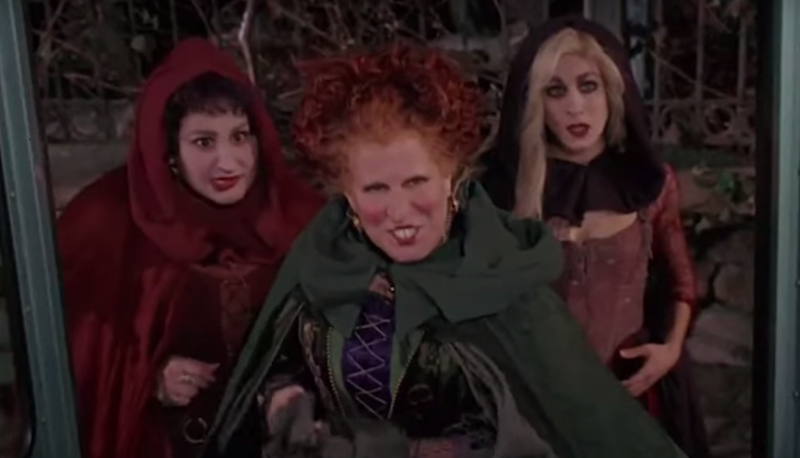 hocus pocus didnt exactly break the box office when it debuted in 1993 but has since became a halloween cult classic fans werent the only ones begging