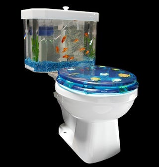 Some Ingenious Plumber Cum Marine Biologist Thought Up A Way To Make Double Use Of The Flush Tank In Your Standard Crapper This Aquarium Comes With