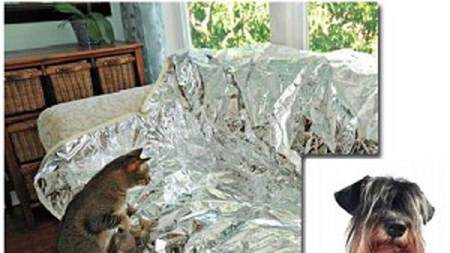 Aluminum Foil Aluminum Foil Keep Dogs Off Furniture