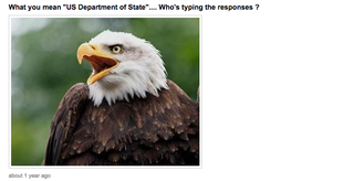 Illustration for article titled The State Department Tried To Fight ISIS On Ask.fm, and It Didn't Go Well