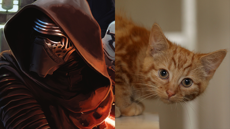 Illustration for article titled The Power of the Dark Side Is Basically Kittens