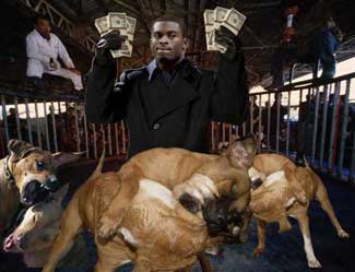 Dog Fighting Vick It's Almost As If — ...