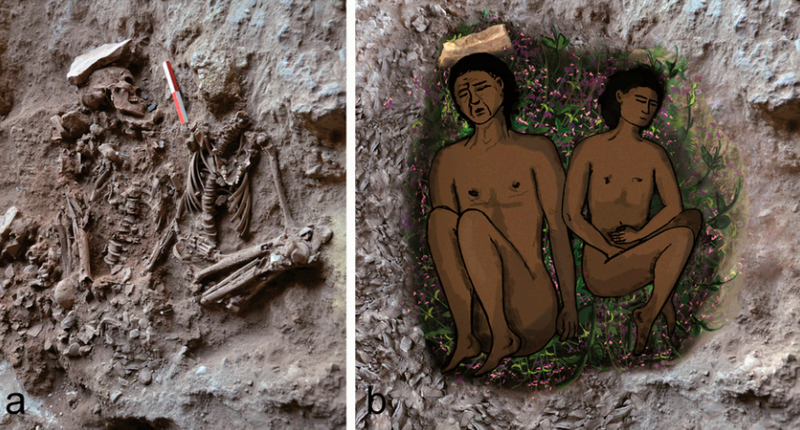 Illustration for article titled Oldest funerary flowers ever unearthed in Israel