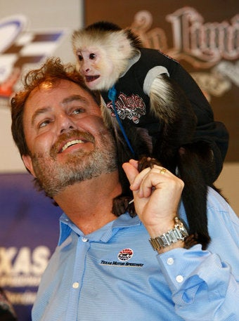 Illustration for article titled Monkeys Will Sell Programs, Hear Complaints About Jobs At Today's NASCAR Race