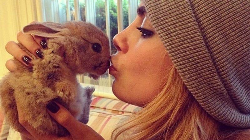 Illustration for article titled Report: Supermodel Cara Delevingne Hires Nanny for Pet Rabbit