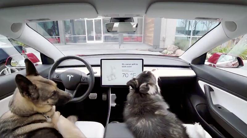 Illustration for article titled Los Tesla ahora tienen un Modo Perro que controla el climatizador cuando dejamos el perro dentro del coche