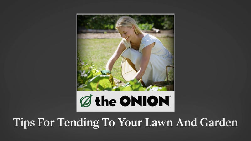 Tips for tending to your lawn and garden for Tending to the garden