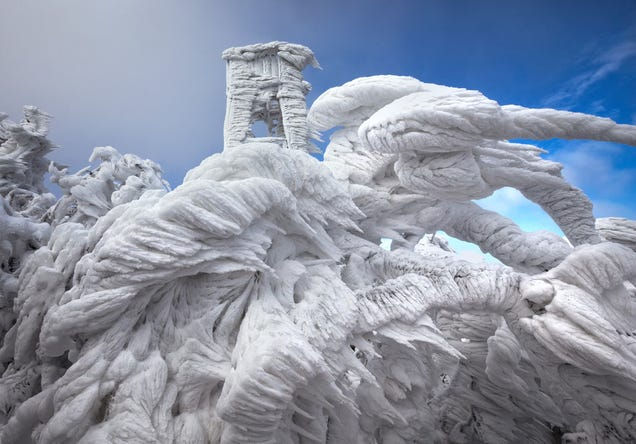 An Unusually Strong Winter Storm Produced Beautiful Ice Formations