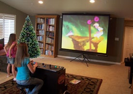 Illustration for article titled True Dream Arcade Features 120-Inch Screen, 145 Installed Games and Wii Adaptor