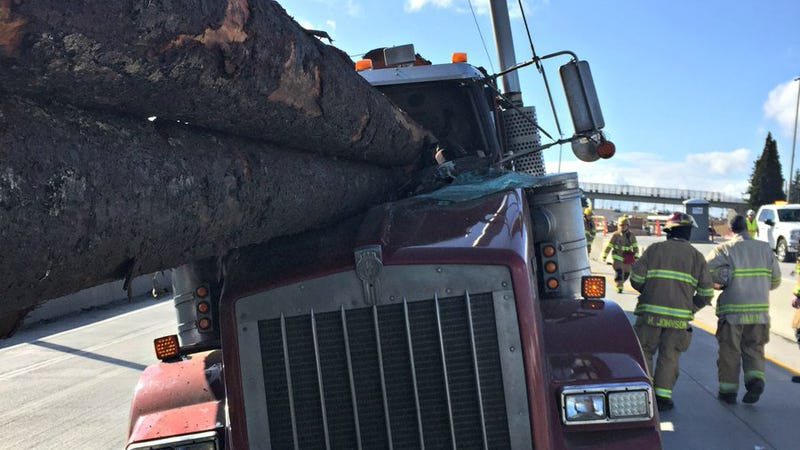 Illustration for article titled Somehow The Guy With All The Logs In His Cab Escaped This Nightmare Crash Without Injury