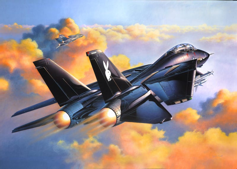 Illustration for article titled Tomcat Tuesday