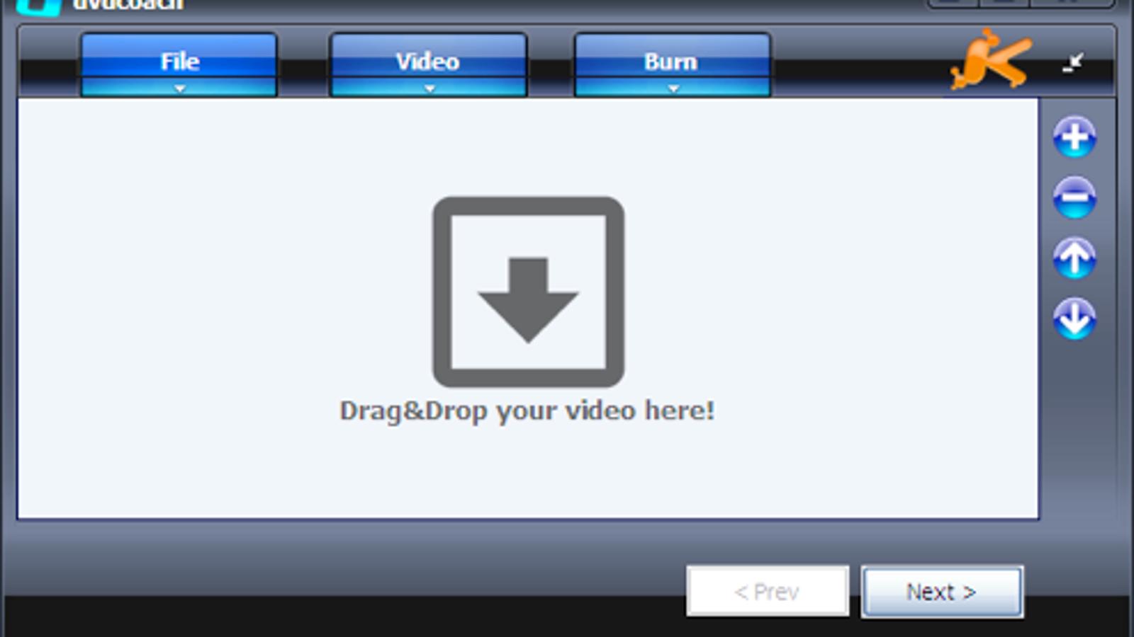 divx bitorrent