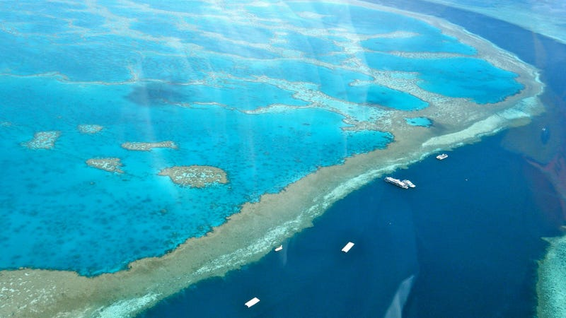 A view of the Great Barrier Reef from a helicopter ride. The reef is responsible for an estimated 64,000 tourism jobs, according to a new Deloitte report. (Image: Sarah Ackerman/Flickr)
