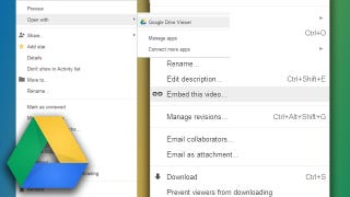 Illustration for article titled Embed Video on a Web Page with Google Drive
