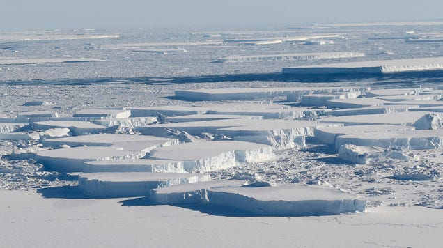 Scientists Will Once Again Try to Explore Alien Ecosystem Exposed by Giant Antarctic Iceberg