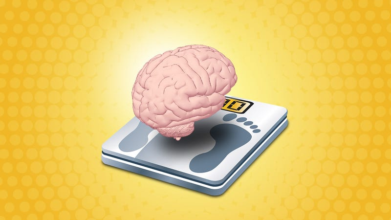 Illustration for article titled Focus More on Your Brain and Less on Your Diet to Lose Weight