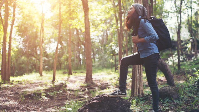 Plan a Hike to Get Some Fresh Air and Tune Out Holiday Stress