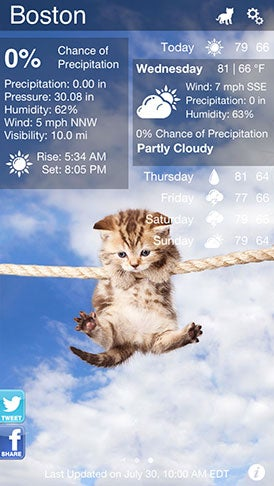 Illustration for article titled Kitty App Allows Cat Overlord to Dictate Your Mood About Weather