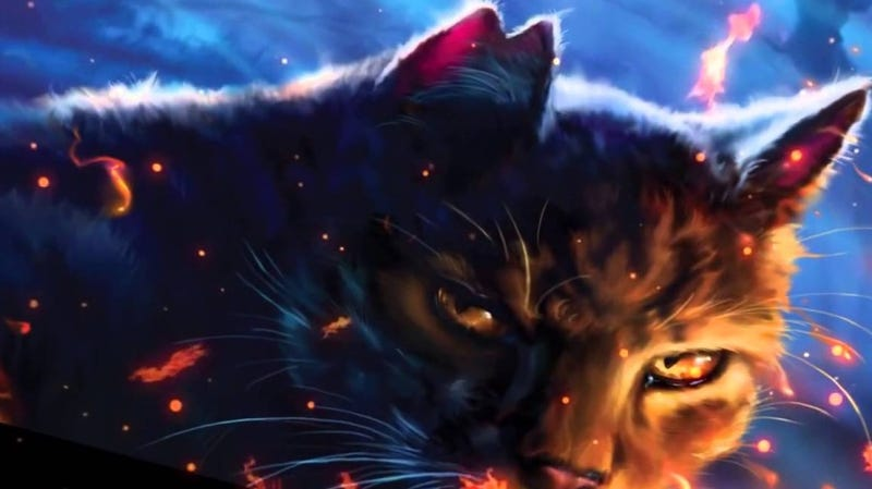 Illustration for article titled Harry Potter Producer Joins Warriors, a Movie About Fighting Cats