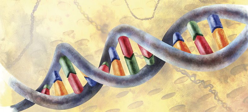 Illustration for article titled Video Explainer: The Math Inside the Shape of DNA