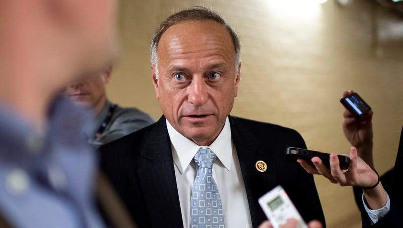 Illustration for article titled Steve King Vehemently Denies Comparing Immigrants To People
