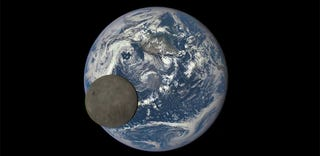 Illustration for article titled Watch the Moon cross the face of the Earth in this incredible video